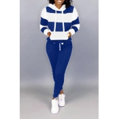 Lovely Casual Hooded Collar Patchwork Blue Two Pie